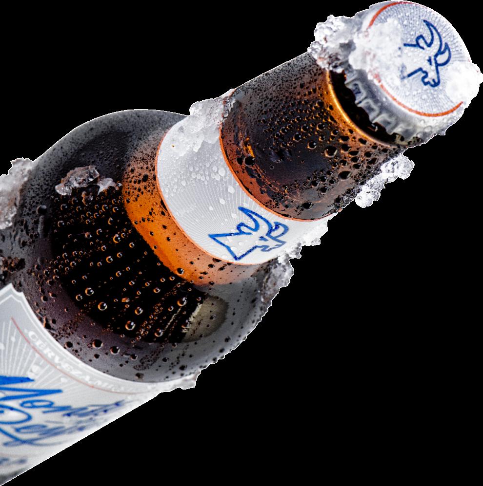 cerveza monte de reyes